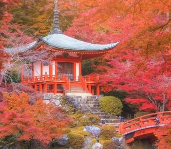 Ngắm nhìn khung cảnh mùa thu lãng mạn trên khắp thế giới