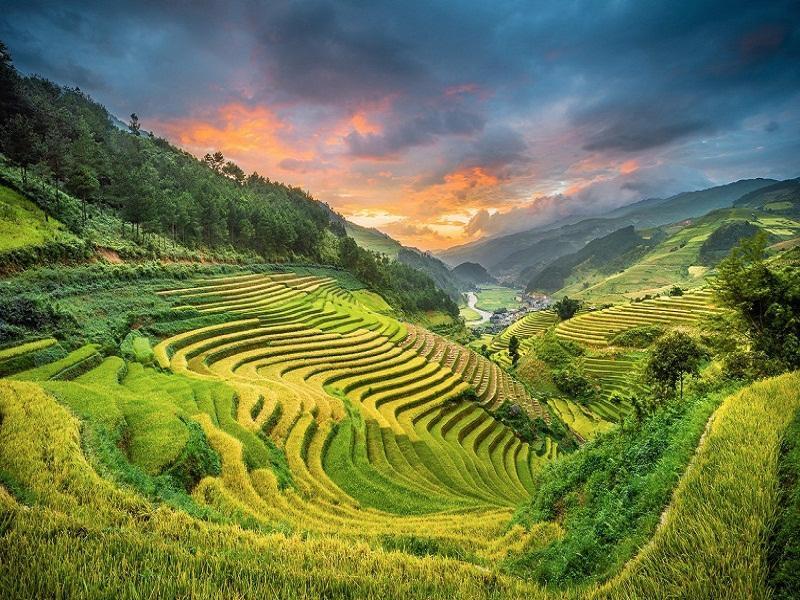 Bất ngờ Việt Nam lọt top 9 ruộng bậc thang đẹp nhất thế giới