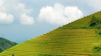"""Hãng tin Đức giới thiệu 11 điểm du lịch mê hoặc với """"hành trình xuyên Việt, từ Bắc chí Nam"""""""