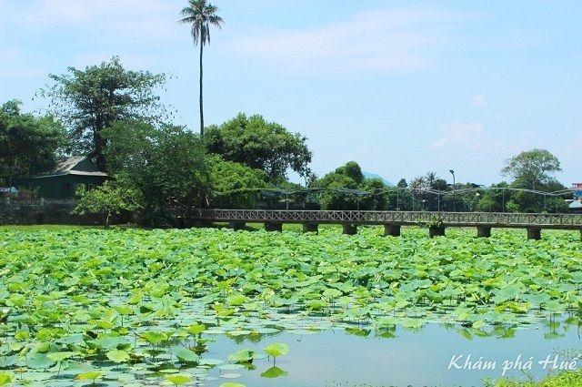 Đảo Bồng Lai - hồ Tịnh Tâm: Vườn ngự uyển bên Kinh thành Huế
