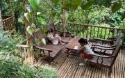 Xu hướng nghỉ dưỡng mùa hè ở Mộc Châu