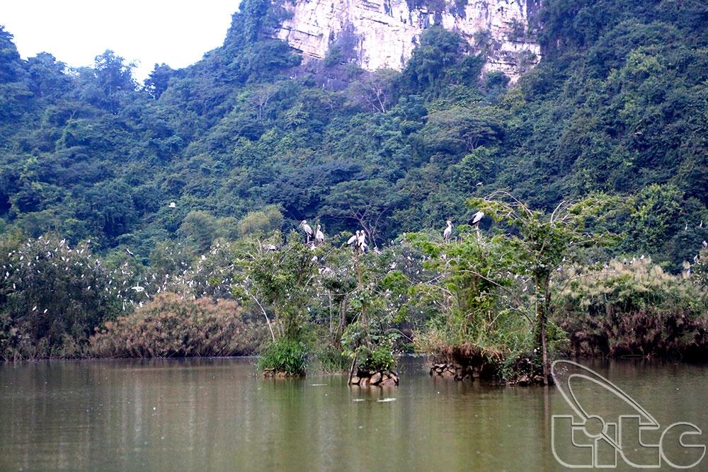 Thưởng ngoạn cảnh sắc thiên nhiên tuyệt đẹp của Ninh Bình