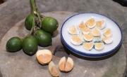 Kẹo cau - Đặc sản tuổi thơ, ngậm mà nhớ Huế