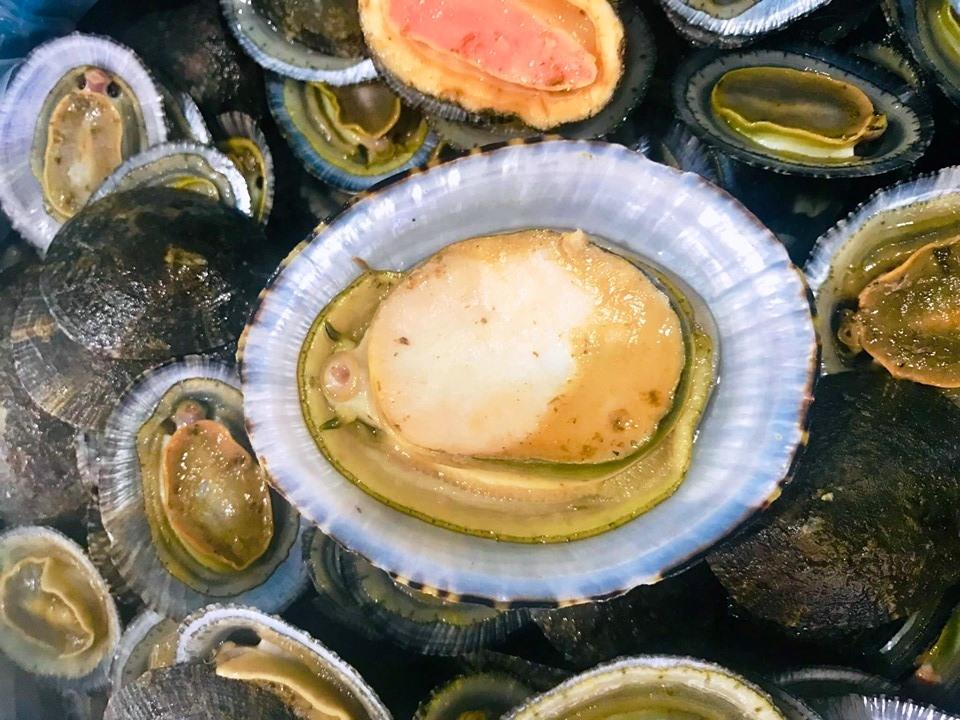 Ốc vú nàng - Hải sản trứ danh ở Côn Đảo
