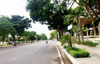 Những con phố trở mình
