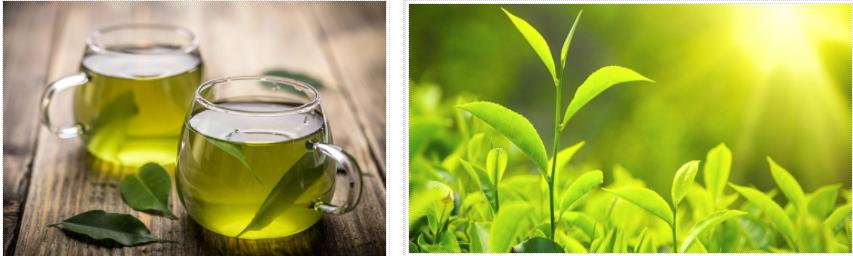 Uống trà xanh thế nào cho tốt?