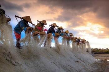 Vẻ đẹp mặn mà của những cánh đồng muối Ninh Thuận