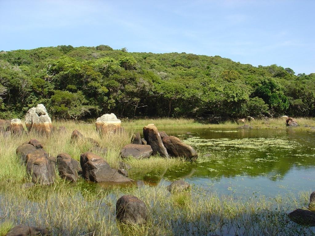 Khám phá vẻ đẹp hoang sơ của Khu dự trữ sinh quyển Núi Chúa