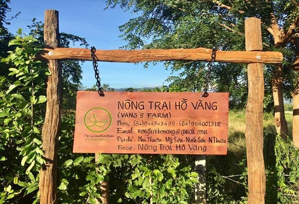 Tham quan nông trại Hồ Vàng - Mô hình du lịch sạch