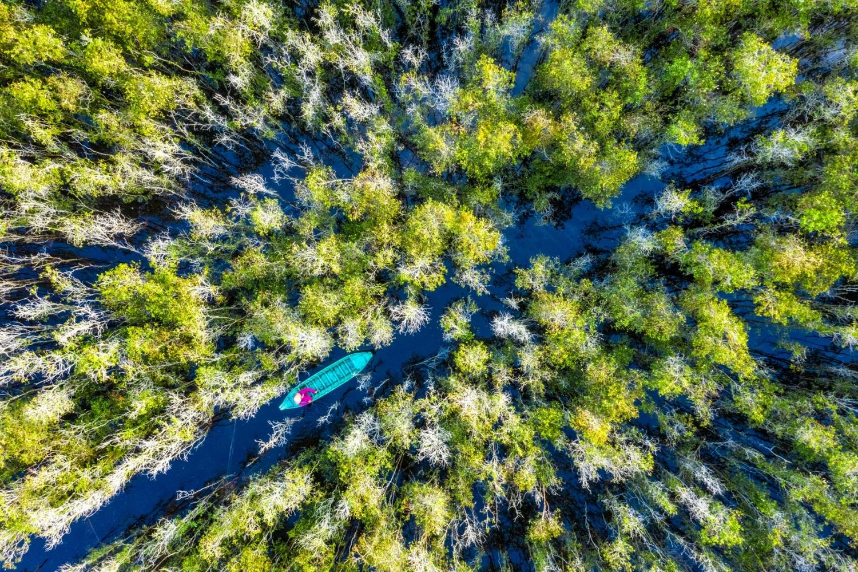 Vẻ đẹp độc đáo của Vườn quốc gia Tràm Chim