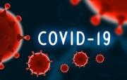 Tin mới nhất về tình hình Covid-19 trên thế giới - ngày 17/9