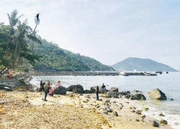 Quảng Nam: Lãng đãng Bãi Hương