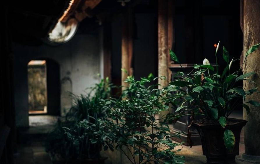 Chùa Bổ Đà - Dấu xưa độc đáo vùng Kinh Bắc