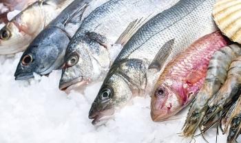 Cách rã đông cá khoa học nhất để giữ chất dinh dưỡng