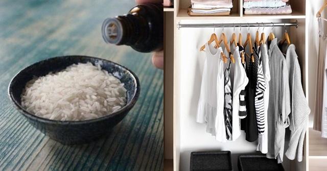 Đặt một túi gạo vào tủ quần áo, bạn sẽ thấy điều bất ngờ xảy ra!