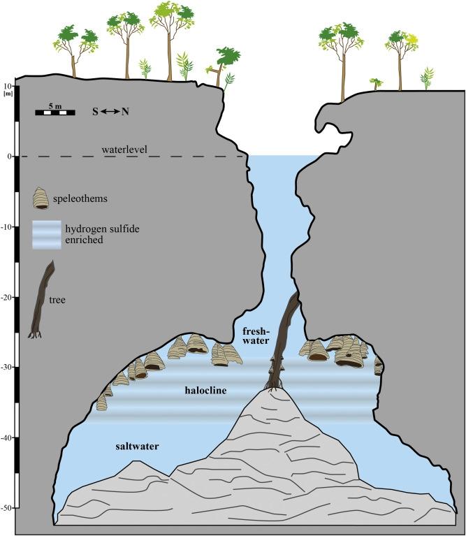 """Khám phá hang thạch nhũ hình chuông """"siêu độc"""" ở Mexico"""