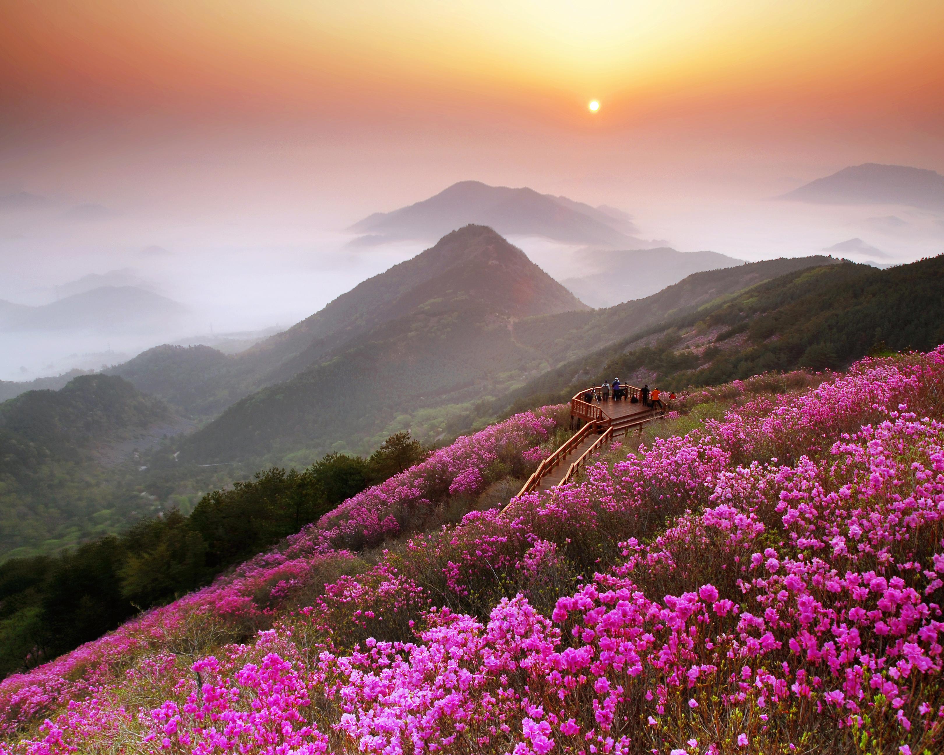 Changwon - Thành phố du lịch xinh đẹp của xứ sở Kim chi