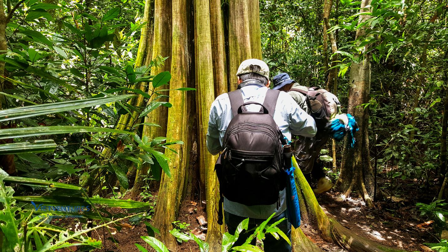 Du lịch không túi ni lông, du lịch xanh tại Vườn quốc gia Cát Tiên