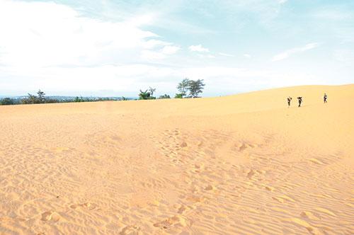 """Phiêu lưu cùng """"đồi cát bay"""" Mũi Né"""
