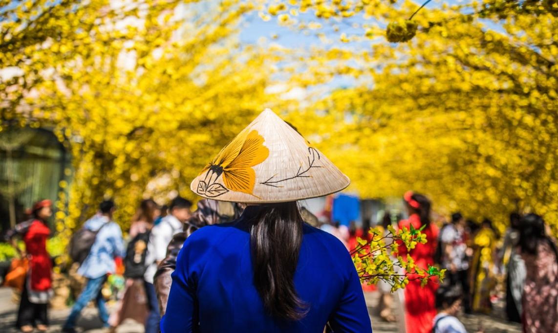 Báo quốc tế gợi ý các hoạt động du lịch suốt 12 tháng ở Việt Nam