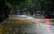 Thời tiết hôm nay ngày 15/9/2021: Mưa dông trên cả nước