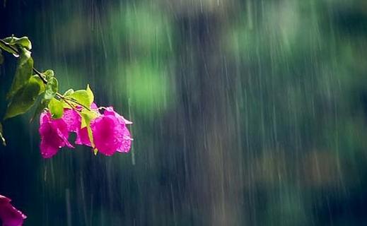 Thời tiết hôm nay ngày 12/9/2021: Trung Bộ mưa to do ảnh hưởng của bão