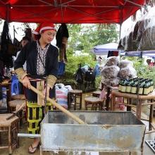 le hoi mua dong fansipan chiem nguong phien ban khac cua cay thong dep nhat chau au