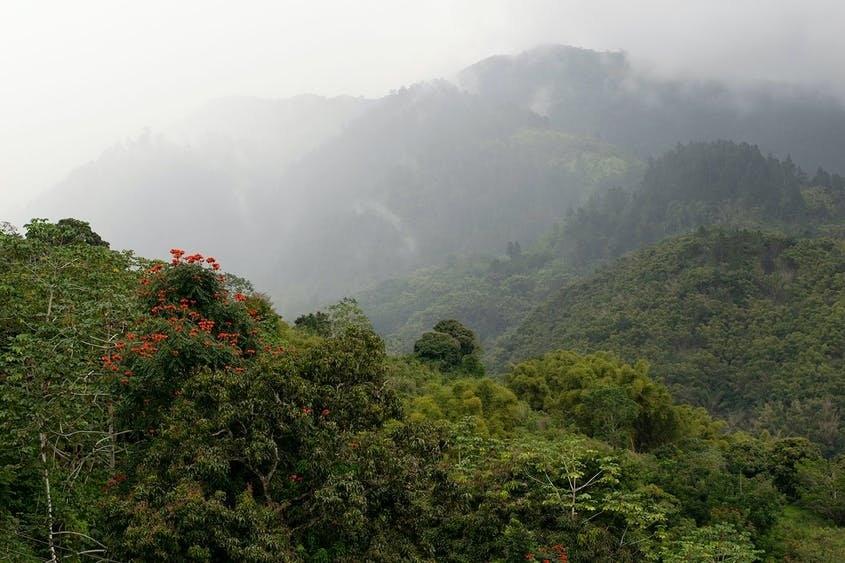 10 di sản thế giới đặc biệt được UNESCO công nhận, trong đó có Tràng An của Việt Nam