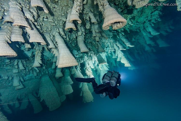 Hell's Bells - địa điểm lặn kỳ lạ nhất thế giới