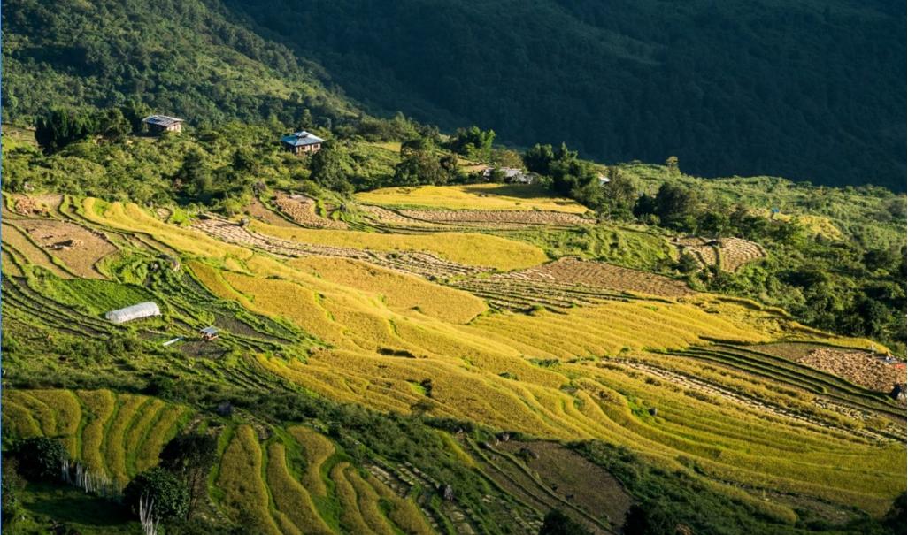 bhutan mot trong nhung quoc gia hanh phuc nhat the gioi qua loi ke cua du khach phan i