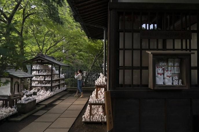 bi mat tuong meo may man ben trong ngoi den o tokyo