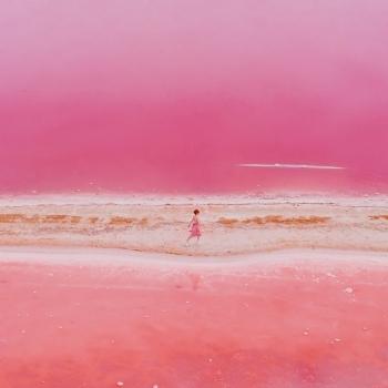 """Hồ nước """"Hồng"""" kỳ diệu nằm cạnh nhà máy sản xuất vi tảo lớn nhất thế giới"""