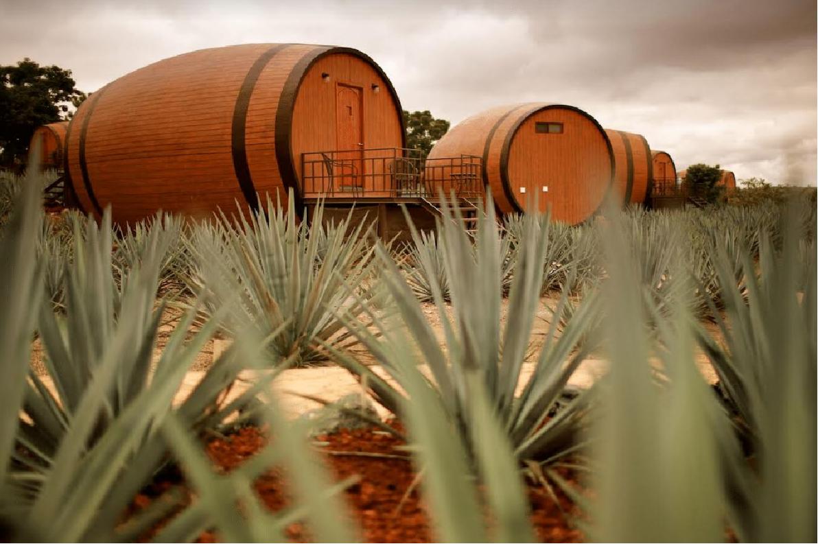 """Qua đêm tại """"Thùng Rượu"""" giữa thị trấn Tequila"""