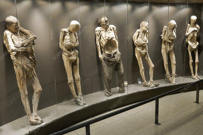 Thích thú trước những bảo tàng kỳ lạ nhất hành tinh