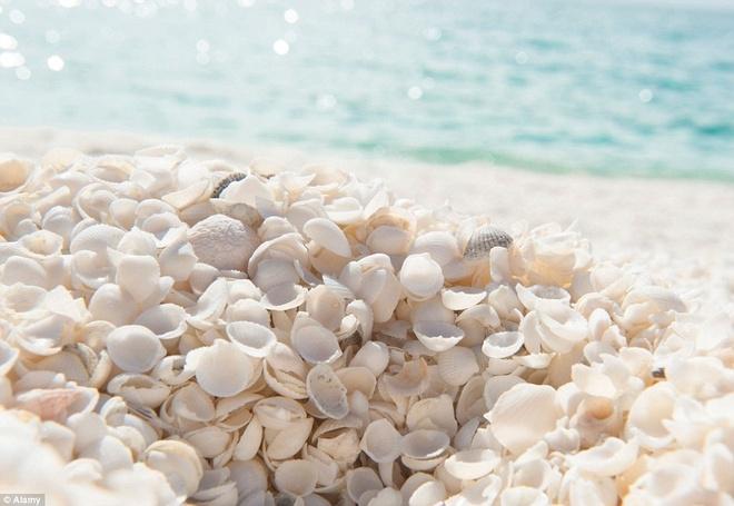 Top 6 bãi biển kỳ lạ nhất thế giới mà bạn không tin là có thật