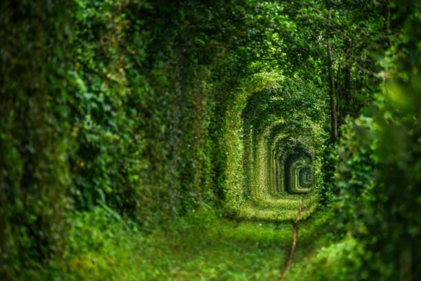 """Choáng váng với kiến trúc của 6 đường hầm """"độc lạ"""" nhất thế giới"""