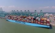 """Cước vận tải biển tăng phi mã - Cuộc chơi của các """"ông lớn"""""""