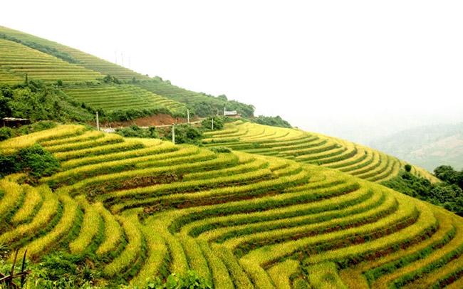 Top 5 ngọn núi Việt Nam mà du khách nước ngoài không thể bỏ qua