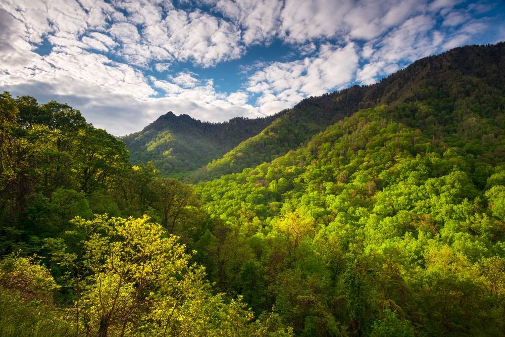 Những điều thú vị về dãy núi Smoky