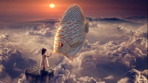 Mơ thấy bắt cá là điềm gì? Dấu hiệu và ý nghĩa cần chú ý