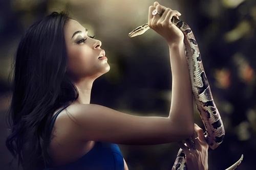 Nằm mơ thấy rắn là dấu hiệu điềm lành hay dữ?