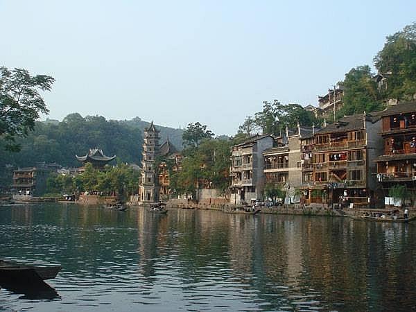 lac loi o phuong hoang co tran