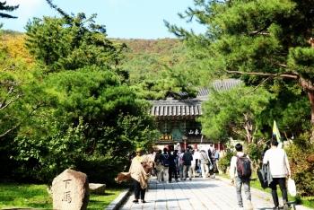 Tự sự: Lạc lối ở Busan